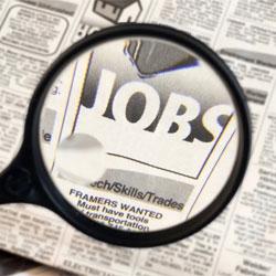 University+webmaster+job+description